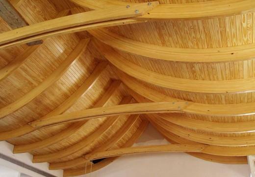 Maderas cultivadas: el álamo se presenta como una alternativa multipropósito