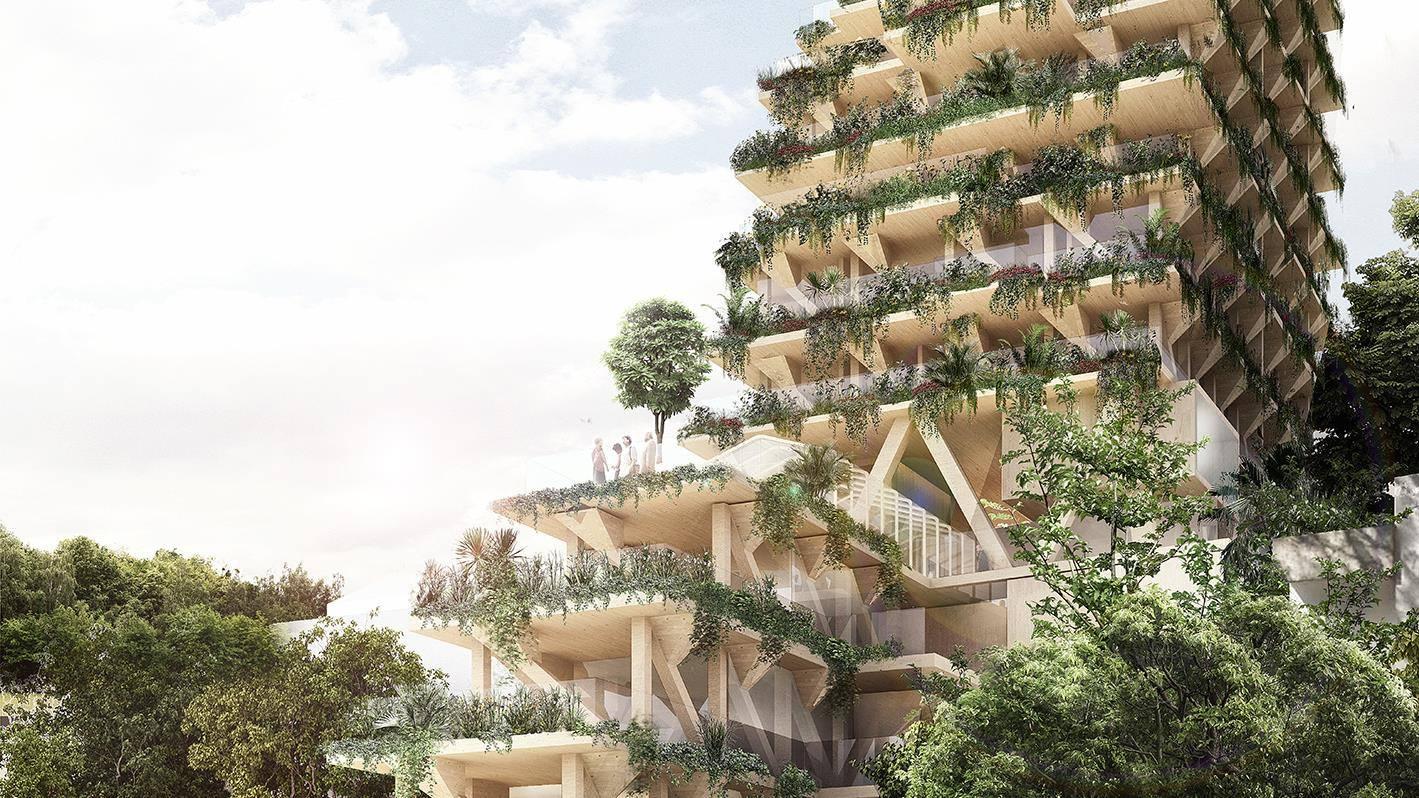 Brasil: tendrá su edificio sustentable de madera de 13 pisos ...