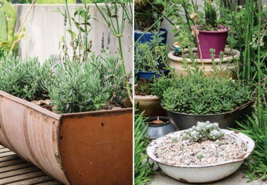 Antes de la primavera. Renová tu patio o jardín con detalles e ideas sencillas