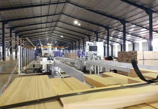 El 40% de las empresas vinculadas a la industria maderera vende más ahora que al comienzo de la pandemia