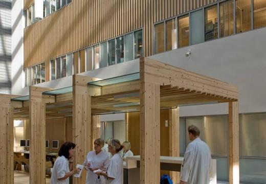 Estudio revela que el uso de madera en hospitales y centros médicos contribuye notablemente a la recuperación de los pacientes.