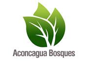 Aconcagua_bosques