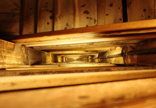 España: Expertos en distintas áreas coinciden en que la madera es el material más sostenible y duradero para utilizar en interiores y exteriores.