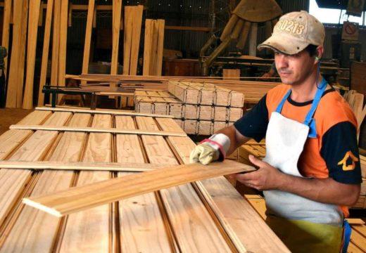 Venta de madera copó el mercado y lo definen como un boom para el sector – Diario misionero El Territorio